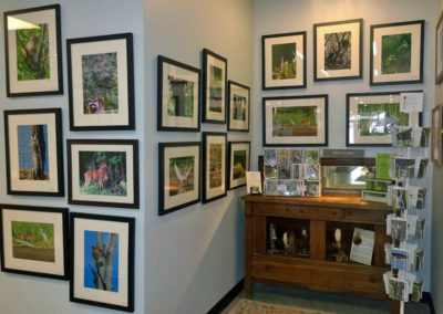 Artisans Corner Gallery Patty Gates